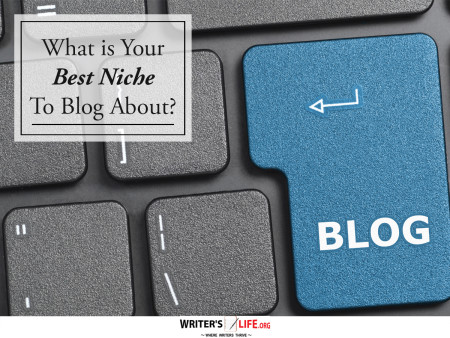 What is Your Best Niche To Blog About? - Writer's Life.org